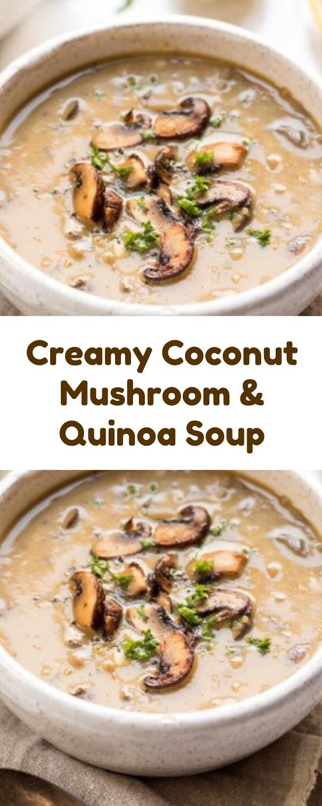 Delicious Creamy Coconut Mushroom & Quinoa Soup Recipe