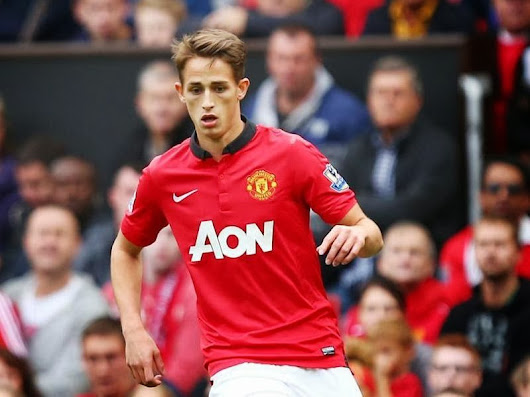 Adnan Januzaj Wallpaper HD