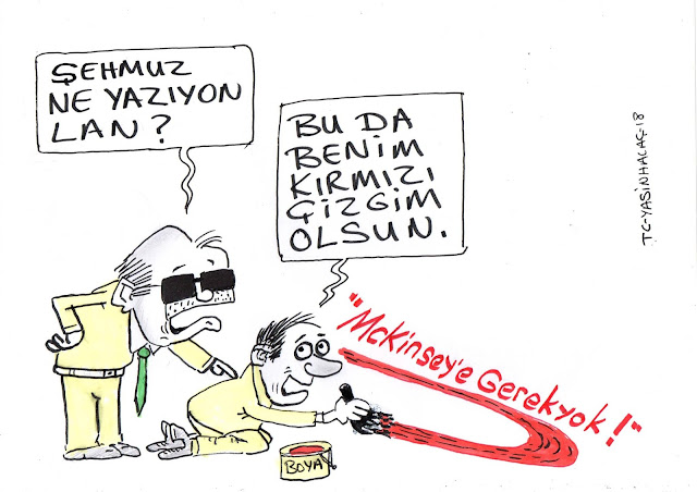 mckinsey karikatür