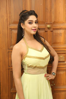 Actress Angana Roy Latest Pohtos in Long Dress at Sri Sri Movie Audio Launch 0002
