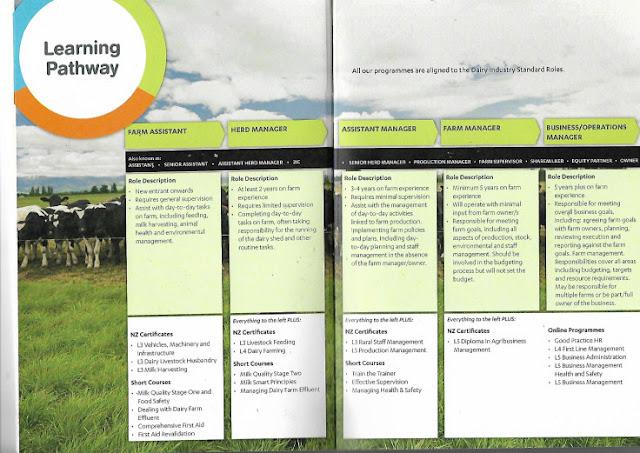 info jenjang karir Dairy Farmer peternakan di New Zealand