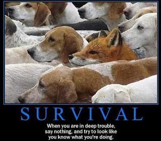Gambar Gambar Lucu Motivasi Bahasa Inggris Survival