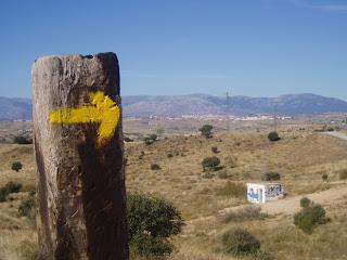 camino de santiago guia