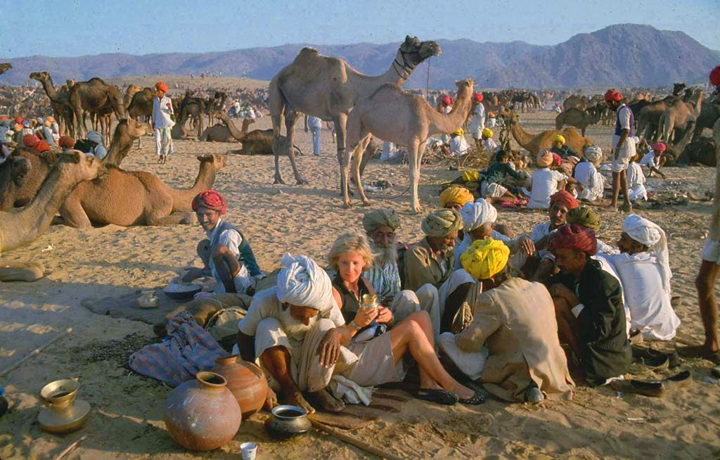 Gathering of cattles and tourists at Pushkar Mela in Rajasthan