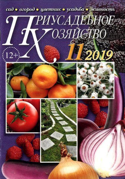 Читать онлайн журнал Приусадебное хозяйство (№11 ноябрь 2019) или скачать журнал бесплатно