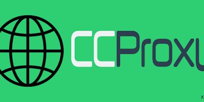 ccproxy 8