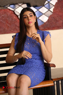 Actress Aditi Singh  Pictures in Short Dress at Movie Interview  0105