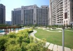 Apartments for rent in DLF Aralias Gurgaon