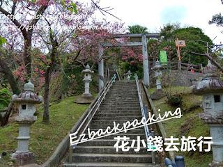 沖繩名護櫻花