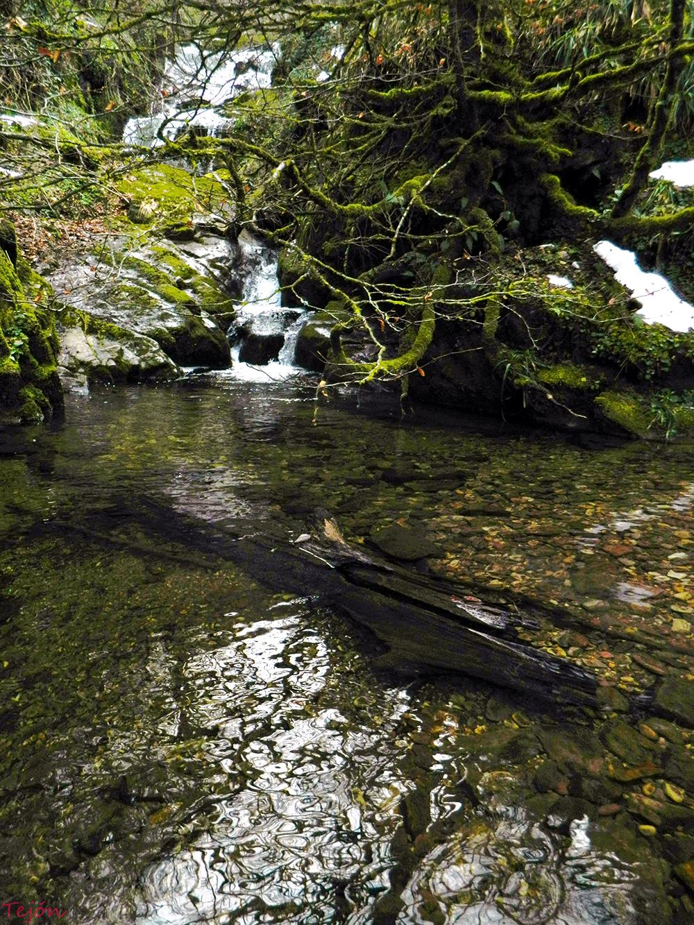 La cueva del tasugo: LA CUADERNA DE UN GALEÓN