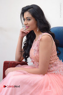 Actress Neha Hinge Stills in Pink Long Dress at Srivalli Teaser Launch  0084.JPG