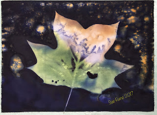 Wet cyanotype_Sue Reno_Image 95