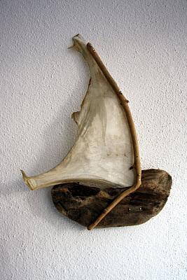 odun-yelkenli-yalos