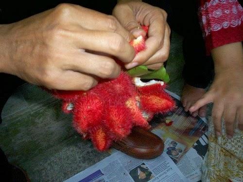 Proses pewarnaan alami Batik Arta Kencana Pemalang