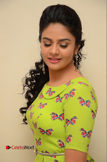 Actress Sri Mukhi Latest Pictures in Green Dress at Mental Movie Audio Launch  0017.JPG