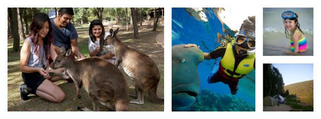 Discover Australia with your Family   via  www.productreviewmom.com