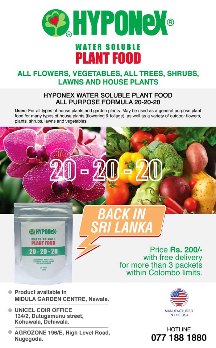 HYPONeX Plant Food - for all flowers, vegetables, fruits, lawns and house plants.