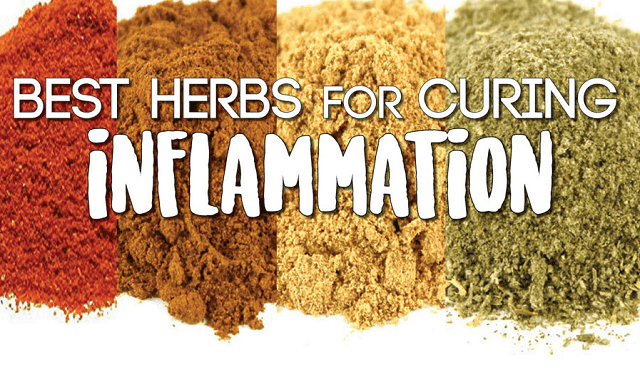 Best Herbs for Curing Inflammation Fast