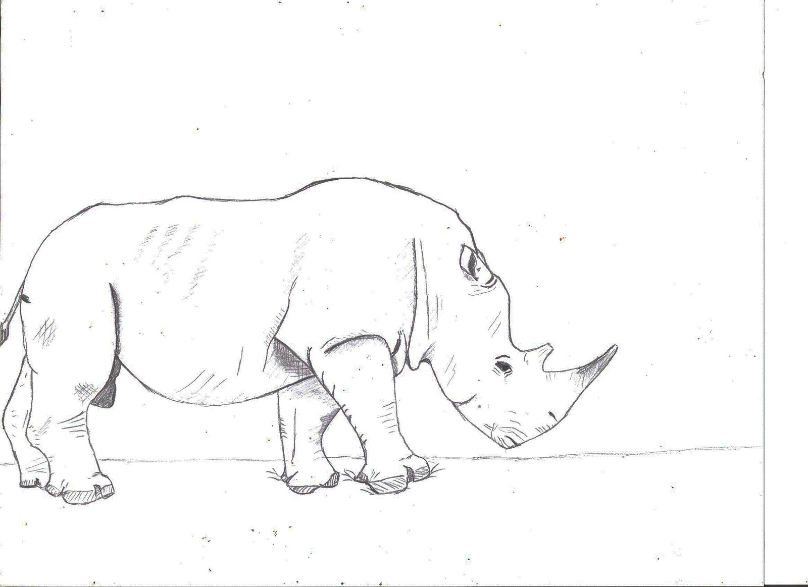 How to draw rhino spiderman
