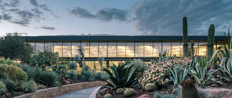 Desert City. Jardines, cactus y xeropaisajismo en Madrid