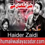 https://www.humaliwalyazadar.com/2018/10/haider-zaidi-nohay-2019.html