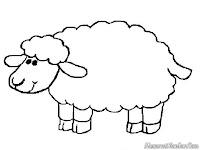 Gambar Domba Gemuk Untuk Diwarnai