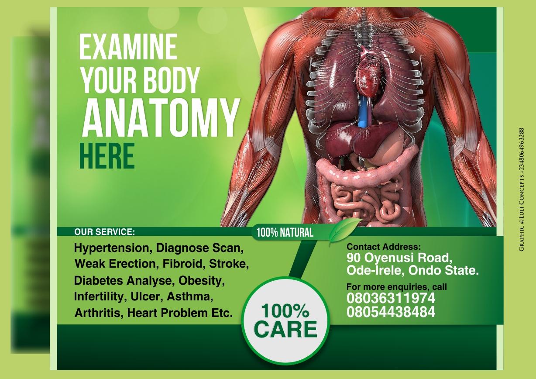 Human Anatomy Test Luli Concepts