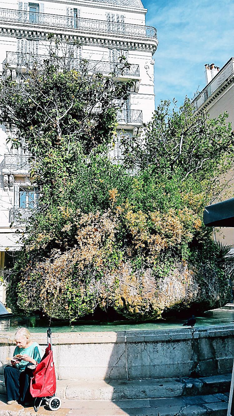Fontaine des Trois-Dauphins auf dem Place de Puget, auch Place des Dauphins genannt  | Arthurs Tochter kocht. von Astrid Paul. Der Blog für food, wine, travel & love