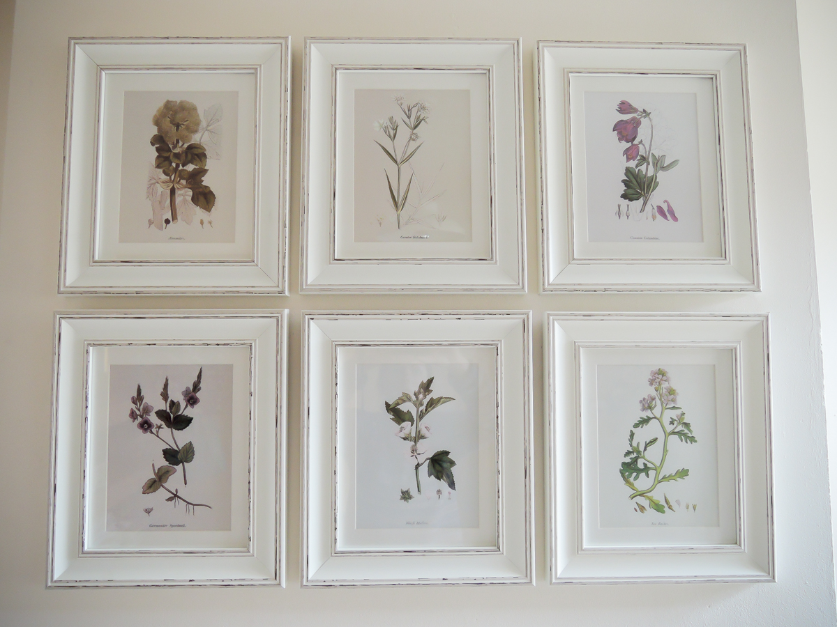 A handmade cottage: Botanical print feature wall & how to hang ...