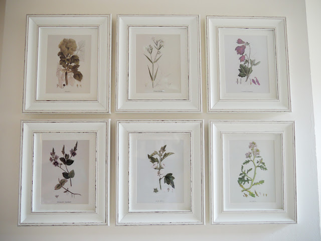 Botanical prints feature wall