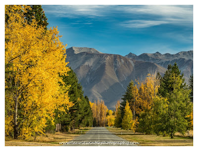 Twizel, Autumn, Road, Mountains