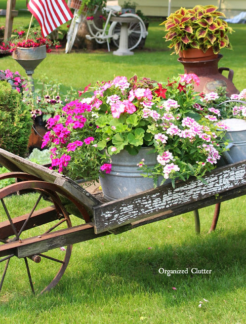 Laundry Tub/Wheelbarrow Annual Plants organizedclutter.net