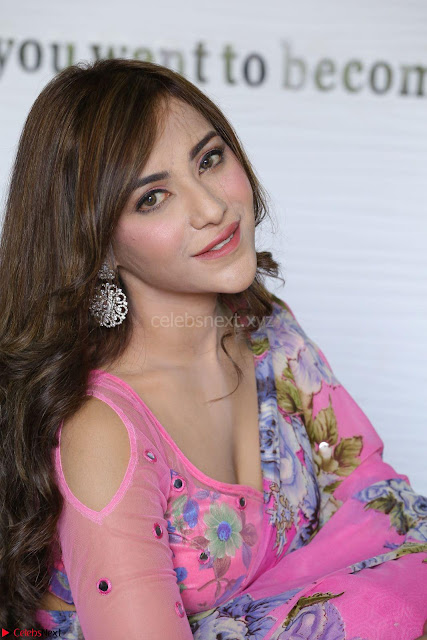 Actress Angela Krislinzki in Pink Saree Blouse Exclusive Pics March 2017 ~  002.JPG