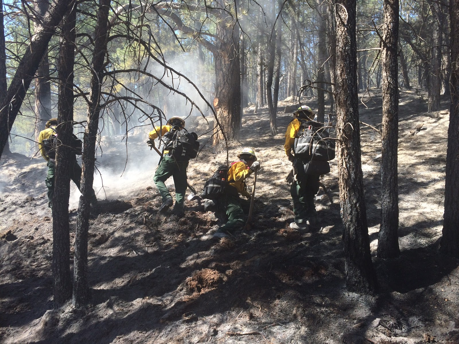 cold fire air attack photos by jerry krueger black hills national forest