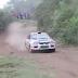 Perro Iba A Ser Atropellado Por Auto De Rally Pero Sucede Algo Inesperado