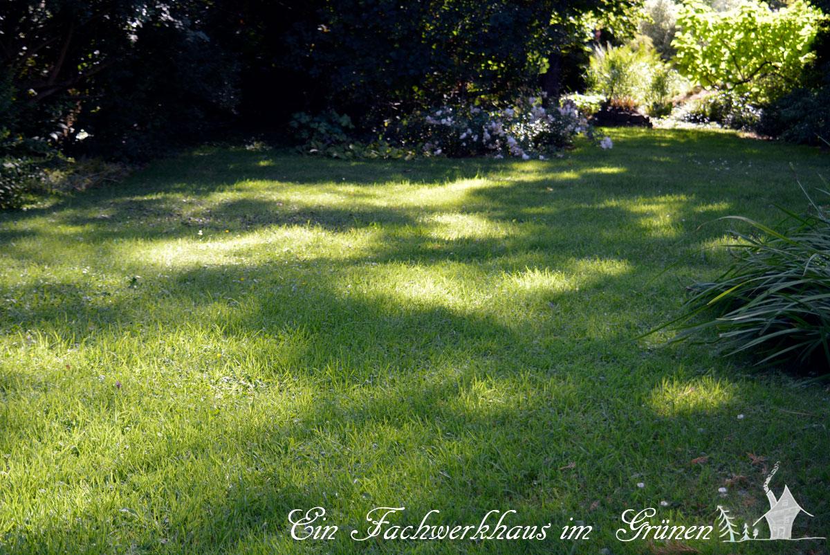 mulchmäher im härtetest | ein fachwerkhaus im grünen