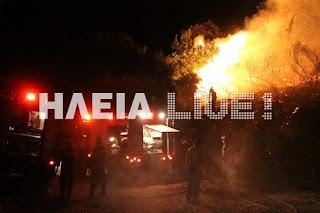 Θέλουν να κάψουν την Ηλεία - Τρεις το ξημέρωμα πυρκαγιά σε δάσος