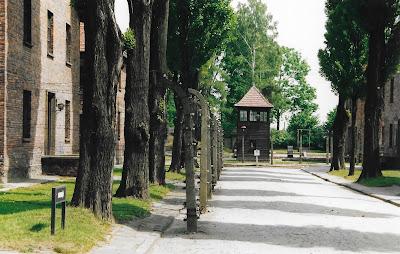 Auschwitz, overal prikkeldraad
