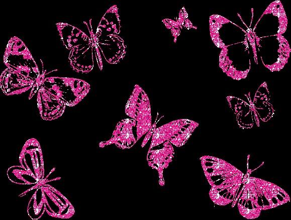 Varuchi B Day Butterfly Animation