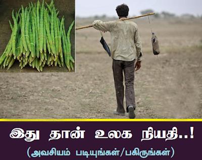Image result for நல்லதை மட்டுமே விதைப்போம்!!