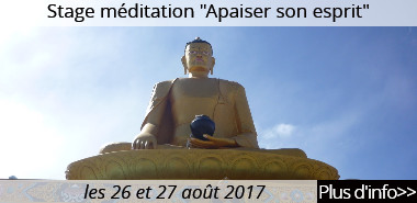 http://drikungkagyuparis.blogspot.fr/p/apaiser-sonesprit.html