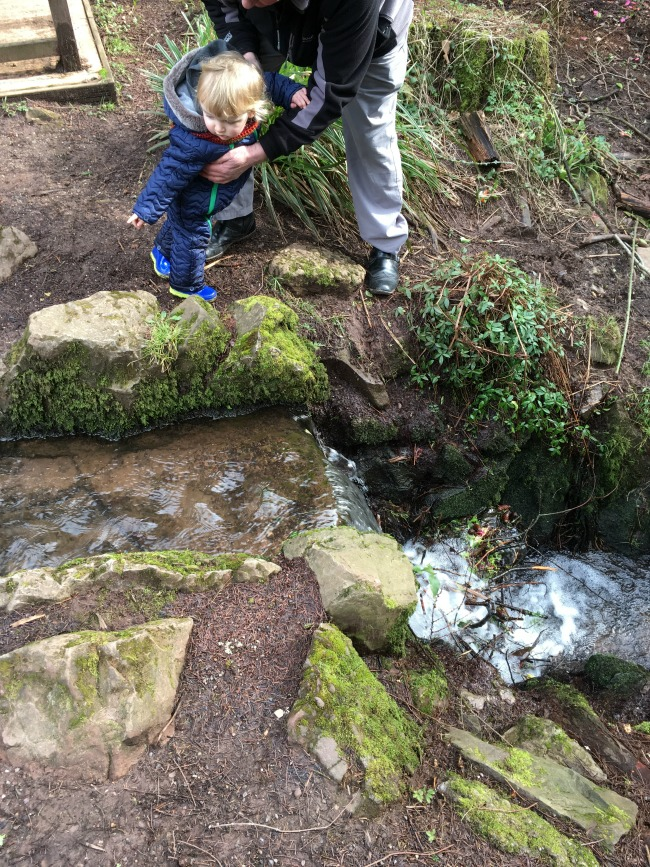 toddler pointing at things in steam next to waterfall