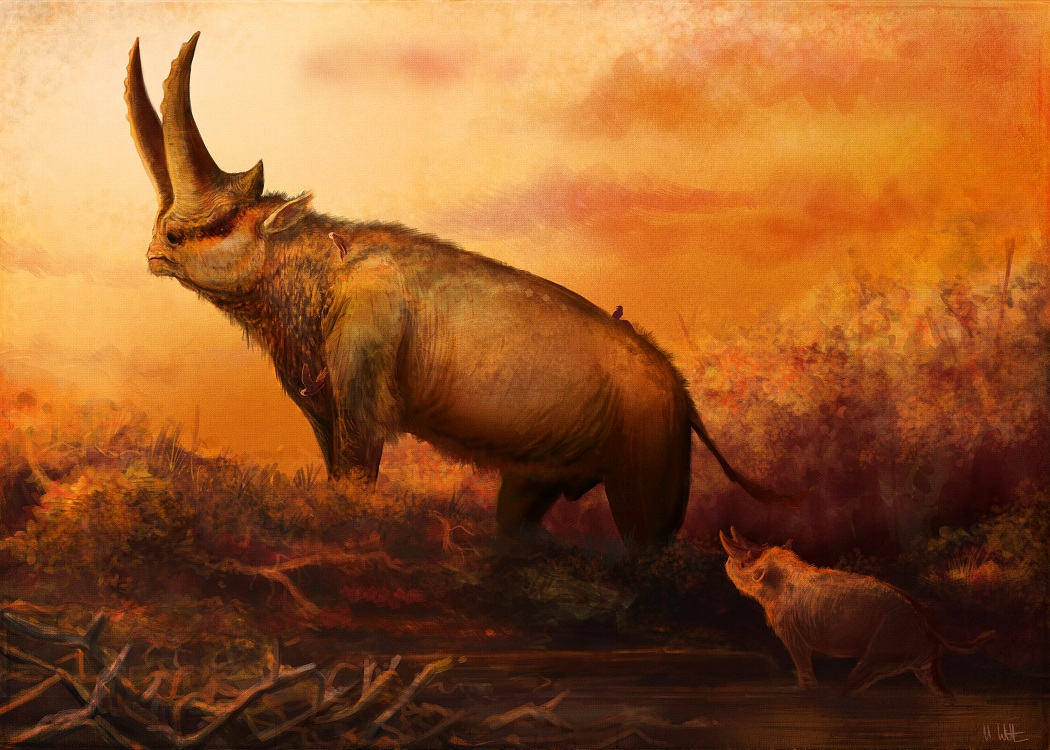 What distinguishes horned animals: a survey of horns