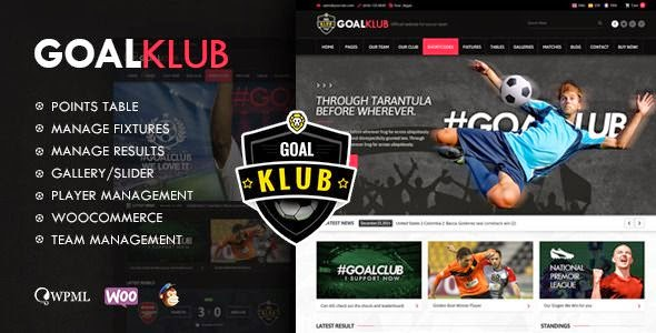 Responsive WordPress Theme for Sports 2015