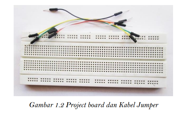 Gambar 1.2 Project Board dan Kabel Jumper