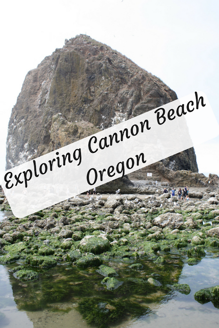 Waves, Tide Pools and Relaxation at Cannon Beach in Oregon
