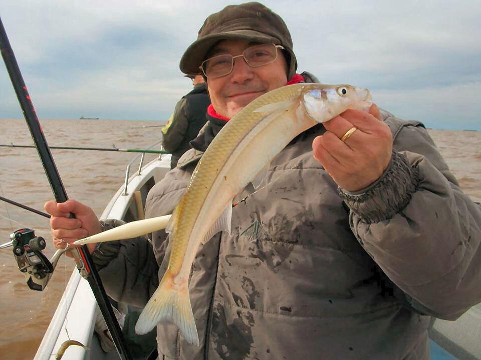 La caza la pesca el modelo para dle