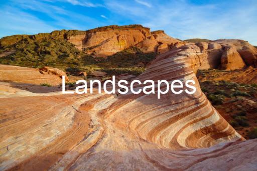 Landscape Gallery