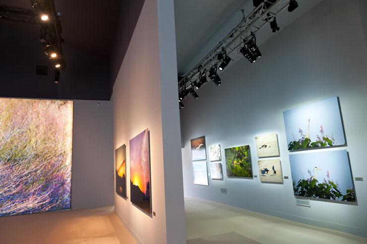 L illuminazione led per valorizzare i quadri