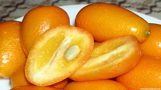 Oval kumquat fruit images wallpaper